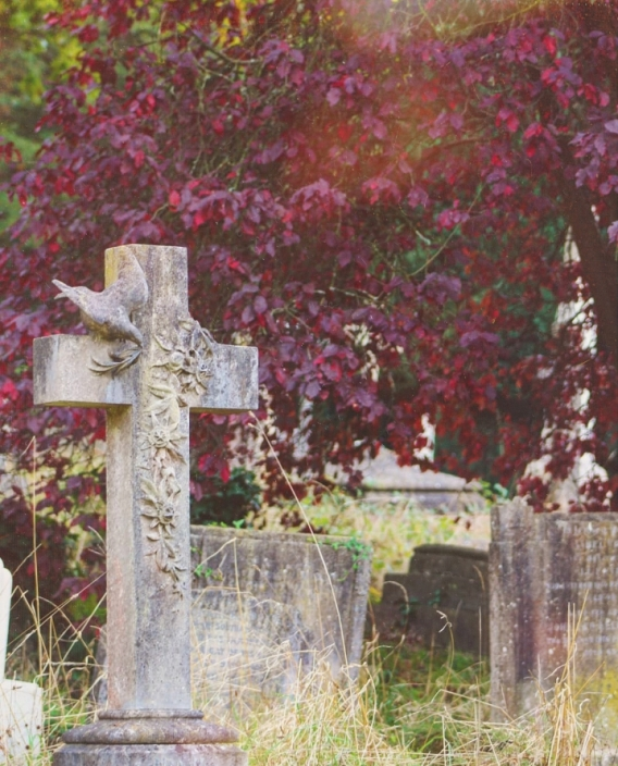 red leaves in a tree behind grave stones